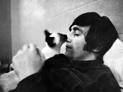 lennon-cat.jpg (400×301)