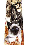 Awesome cat tie